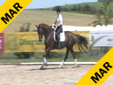 Heike Kemmer<br> Assisting<br> Diana Mukpo<br> Pascal<br> Swedish Warmblood<br> Training: GP Level<br> Owner:  Diana Mukpo<br> Duration:  33 minutes