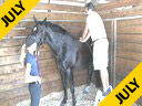 Massage Therapy for Dressage Horses<br>Sal Salvetti<br>& Jane Hannigan<br>Discussion on<br>Massage Therapy<br>for Dressage Horses<br>Part 3 of Three Parts<br>Duration:41 minutes