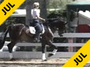 Mette Rosencrantz<br>Riding & Lecturing<br>Donnatello<br>By:Don Schufro<br>Swedish Warmblood<br>6 yrs. old<br>Training:3rd Level<br>Duration: 40 minutes