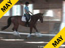 "Day 2<br> Christoph Hess<br> ""Lecture on the training Level Test""<br> Assisting<br> Andrea Beukema<br> Chanson<br> Swedish Warmblood<br> 10 yrs old<br> Training: Training Level<br> Owner: Ellen Nelson<br> Duration: 43 minutes"