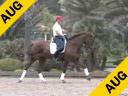 Available on DVD No.32<br>Day 1<br>Guenter Seidel<br>Riding & Lecturing<br>UII<br>(owned by Dick & Jane Brown)<br>KWPN<br>7 yrs. old<br>Training Prix St. George<br>Duration: 46 minutes