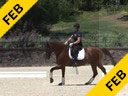 Sabine Schut-Kery<br> Assisting<br> Judy Lister<br> Wobi<br> 12 yrs.old<br> Training: PSG<br> Duration: 59 minutes