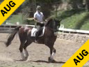 Mette Rosencrantz<br>Assisting<br>Anna Dahlverg<br>Don Juan<br>By:Don Schufro<br>Swedish Gelding<br>7 yrs. old<br>Training Second Level<br>Duration: 38 minutes