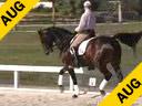Hubertus Schmidt<br>Assisting<br>Shannon Dueck<br>Otto<br>KWPN<br>11 yrs. old Gelding<br>Training Prix St. George<br>Owner: Jean Vinios<br>Duration: 37 minutes