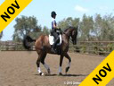 Elizabeth Ball<br> Riding & Lecturing<br> Orion<br> KWPN<br> by:Fleming<br> 14 yrs. old<br> Training: GP Level<br> Owner: Eckstein Farm<br> Duration: 45 minutes