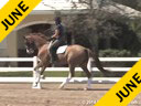 Day 1<br> Jan Brink<br> Assisting<br> Sallie Spenard<br> Riding<br> 1st Ride<br> Dutch Gelding<br> Training: 4th Level<br> Duration: 52 minutes