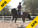 Jan Brink<br> Assisting<br> Sallie Spenard<br> Fendi<br> Warmblood<br> Training: PSG<br> Duration: 44 minutes