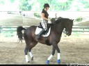 Day 1<br> Felicitas von Neumann<br> Assisting<br>  Susan Herbert<br> Riding<br> Honor<br> 10 yrs. Old TB/Hanoverian cross<br> Training: 2nd Level<br> Duration: 33 minutes
