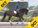 Shannon Dueck<br> Riding & Lecturing<br> Maury<br> KWPN<br> 8 yrs. old Gelding<br> Training: 3rd Level<br> Owner: Lee Garrod<br> Duration: 27 minutes