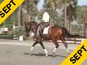 USDF APPROVED<br>University Accreditation<br>George Williams<br>Riding & Lecturing<br>Favore<br>Westfelen<br>8 yrs. old Gelding<br>Training: 3rd Level<br>Duration: 41 minutes