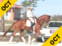 Jeremy Steinberg<br> Assisting<br> Dusty Thiessen<br> Brianna<br> 8 yrs. old Mare<br> Training: 3rd Level<br> Owner: Dusty Thiessen<br> Duration: 45 minutes