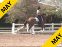 Jan Brink<br> Assisting<br> Joe Sandven<br> Riding<br> Mare<br> Duration: 38 minutes