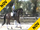 Betsy Steiner<br> Riding & Lecturing<br> Titan<br> KWPN<br> 7 yrs. old Gelding<br> Training: 4th Level<br> Owner: University of Findley<br> Duration: 26 minutes