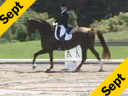 Jeremy Steinberg<br>Riding and Lecturing<br>Elisienne<br>10 yrs. old Oldenburg<br>Training: Prix St. George<br>Duration: 60 minutes