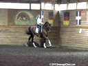 Day 1<br> Markus Gribbe<br> Assisting<br> Carmie Flaherty<br>  Prince Solo<br> Hanoverian<br> By:Pik Solo<br> 12yrs. old Gelding<br> Training:  I1 Level<br> Owned by:<br> Linda Landers<br> Duration: 27 minutes