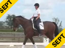 Kathy Connelly<br>Assisting<br>Reese Koffler Stanfield<br>Jamica<br>KWPN<br>16 yrs. old Mare<br>Training: Grand Prix<br>Duration: 27 minutes