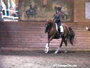 Day 1<br> Markus Gribbe<br> Assisting<br> Eleonore Elstone<br> Donatello<br> Hanoverian<br> 8yrs. old Gelding<br> Training: 3rd/4th Level<br> Owned By:<br> Elizabeth Trenchard<br> Duration: 54 minutes