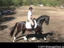 U.S. Trainers & Judges Young Horse Forum<br>Day 3<br> Dr. Dieter Schule &<br> Susanne Lauda<br> Warm-Ups,test rides<br> Discussion of Scoring<br> Assisting<br> Barbi Breen<br> Vindicator<br> KWPN<br> 6 yrs. old Gelding<br>  Duration: 61