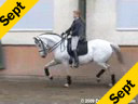 Penny Rockx<br>Assisting<br>Shani Pitcho<br>Ofensa<br>Owned by: Penny Rockx<br>13 yrs. old Lusitano Mare<br>Training: Grand Prix<br>Duration: 36 minutes