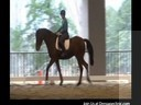Day 1<br> Mary Walness<br> Assisting<br> Lisa Wagner<br> Riding Jesse James<br> Fresian/TB<br> 3 and a half yrs. old Intro<br> Duration: 20 minutes