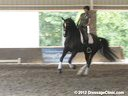 The Georgia Dressage & Combined Training Association<br> Day 1<br> Guenter Seidel<br> Assisting<br> Kerri Stevens<br> Zidane<br> KWPN<br> by: Rousseau<br> Training: 2nd/3rd Level<br> Duration: 45 minutes