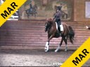 Day 1 Marcus Gribbe Assisting Eleonore Elstone Donatello Hanoverian 8 yrs. old Gelding Training: 3rd/4th Level Owner: Elizabeth Trenchard Duration: 54 minutes