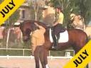 Juan Matute<br>Assisting<br>Paloma Parga<br>Dress Man<br>Trekeiner<br>15 yrs. old Gelding<br>School Master<br>Training: Grand Prix<br>Duration: 21 minutes