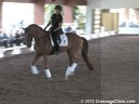 USDF Trainers ConferenceUSDF APPROVED University AccreditationDay 2 Christoph Hess Assisting Barbie Asplundh Rising Star KWPN by: Krack C 14 yrs. old Gelding Training: Green-GP Level Duration 41 minutes