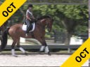 Kathy Connelly<br> Assisting<br> Jami Kment<br> Zonia<br> KWPN<br> by: Sir Sinclair<br> 9 yrs. Old Mare<br> Training: PSG<br> Owner: Jami Kment Duration: 35 minutes