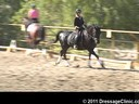 U.S. Trainers & Judges Young Horse Forum<br>Day 1<br> Dr. Dieter Schule<br> Developing Horse<br> Assisting<br> Barbi Breen<br> Vindicator<br> 9 yrs. old &<br> Jo Moran<br> Walking on Sunshine<br> 8 yrs. old Mare<br> Hanoverian<br> Durat