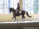GDCTA Annual Symposium with<br> Scott Hassler<br> Assisting<br> Laura Wharton-Mero<br> Fiddle Dee Dee<br> 5 yrs. Old Mare<br> Owner: Patricia Borders<br> Training: FEI 5 yr. olds<br> Duration: 21 minutes