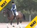 Charlotte Bredahl<br> Riding & Lecturing<br> Westpoint<br> Rheinlander<br> by: Windfall<br> 4 yrs. Old Gelding<br>  Training: Training level<br> Owner: Charlotte Bredahl<br> Duration: 29 minutes