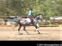 U.S. Trainers & Judges Young Horse Forum<br>Day 2<br> Dr. Dieter Schule<br> Demonstrating the Expectations<br> of the 4 yrs, old<br> Assisting<br> Tamara Smith<br> Fleeceworks Cinco<br> Holsteiner<br> by: Cascani(Casini I)<br> 4 yrs. old<br>