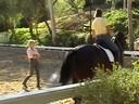 Mette Rosencrantz<br> Assisting<br> Lindsay Smith<br> Eidelweiss du Bounce<br> 12 yrs. old Selle Francais<br> Stallion<br> Training: 3rd. Level<br> Duration: 45 minutes