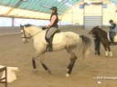 IDCTA Illinios Dressage & Combined Training Association<br> Lilo Fore<br> Assisting<br> Samantha Melchiori<br> Ali Jandro<br> Training: 1st  Level<br> Duration: 27 minutes
