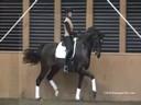 Johann Hinnemann<br> Assisting<br> Lorraine Chappel<br> Riding<br> Training: PSG<br> Duration: 43 minutes