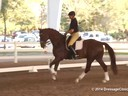 GDFNA Global Dressage Forum North America<br> Udo Lange<br> Riding<br> 11 yrs. old Hanoverian<br> by: De Niro<br> Duration: 29 minutes