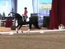 GDFNA Global Dressage Forum North America<br> Ingrid Klimke<br> Riding & Lecturing<br> Dr. Wendell<br> Hanoverian<br> 5 yrs. Old Stallion<br> Duration: 39 minutes