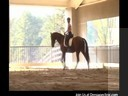 Day 2<br> Mary Walness<br> Assisting<br> Stephanie Mosely<br> Riding Bashert<br> Dutch Warmblood<br> 20 yrs. old training: GP Duration: 25 minutes