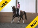 Day 1<br> Markus Gribbe<br> Assisting<br> Rochelle Kilberg<br> Rudy<br> Rotspo<br> 9 yrs. old Gelding<br> Training: GP Level<br> Owner: Ben Kilberg<br> Duration: 33 minutes