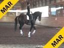 Day 3 Markus Gribbe Assisting Lauren Wright Wie Mien Freund Hanoverian by: Weltmeyer 11 yrs. old Gelding Training: PSG Level Owner: Lauren Wright Duration: 40 minutes