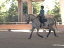 CDS Junior Young Rider Clinic<br> Charlotte Bredahl<br> Assisting<br> Alexandra Dayka<br> Anton<br> 12 yrs. Old Gelding<br> KWPN<br> Training: 3rd Level<br> Duration: 30 minutes