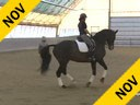 IDCTA Illinios Dressage & Combined Training Association<br> Lilo Fore<br> Assisting<br> Heather McCarthy<br> Saphira<br> Training: I1-I2<br> Duration: 41 minutes