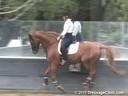 Mette Rosencrantz<br> Riding & Lecturing<br>        &<br> Assisting<br> Anne Solbraekke<br> Rico<br> 11 yrs. old Gelding<br> Danish Warmblood<br> By: Robin<br> Training: PSG Level<br> Owner: Anne Solbraekke<br> Duration: 33 minutes
