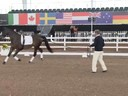 GDFNA Global Dressage Forum North America<br> Bo Jena<br> Long Line Specialties<br> Duration:50 minutes