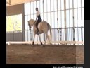 Day 3<br> Mary Walness<br> Assisting<br> Stephanie Mosely<br> Riding Rodin<br> Dutch Warmblood<br> 14 yrs. old<br> Training: 2nd Level<br> Duration: 28 minutes