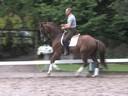 Rien van der Schaft<br> Riding & Lecturing<br> Zoe<br> 9 yrs. Old Gelding<br> Training: PSG<br> Duration: 47 minutes