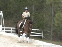 Pam Goodrich<br>
