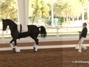 GDFNA Global Dressage Forum North America<br> Bo Jena<br> Long Line Expert<br> Arena Demonstration<br> Duration: 11 minutes