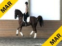 Day 3<br> Markus Gribbe<br> Assisting<br> Dominique Culham<br> Utango<br> KWPN<br> by: Contango<br> 9 yrs. old Gelding<br> Training: 1-1 Level Owner: Denise Turner<br> Duration:  20 minutes